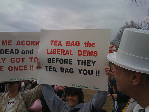 tea-baggers-washington_independent